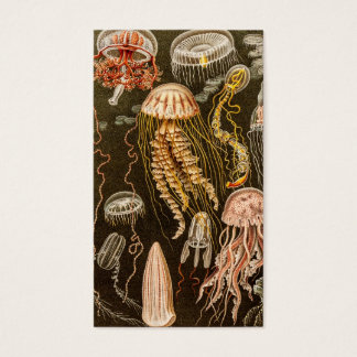 Vintage Jellyfish Antique Jelly Fish Illustration Business Card