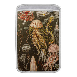 Vintage Jellyfish Antique Jelly Fish Illustration MacBook Sleeve