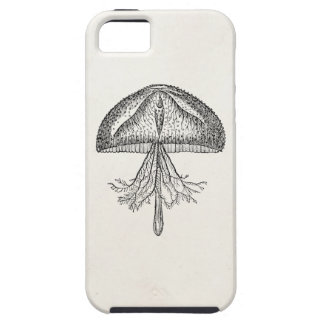 Vintage Jellyfish Antique Jellyfishes Template iPhone 5 Cover