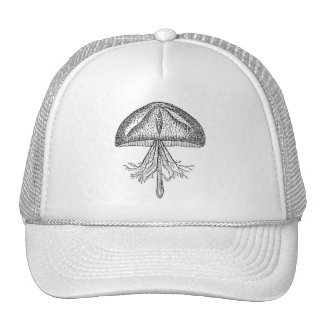 Vintage Jellyfish Antique Jellyfishes Template Trucker Hat
