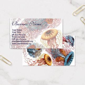 Vintage Jellyfish by Ernst Haeckel, Discomedusae Business Card