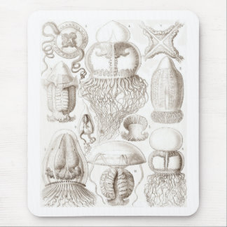 Vintage Jellyfish Illustration Mouse Pad