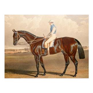 Vintage Jockey On Racehorse Postcard