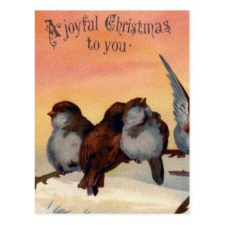 Vintage Joyful Christmas Birds Post Card