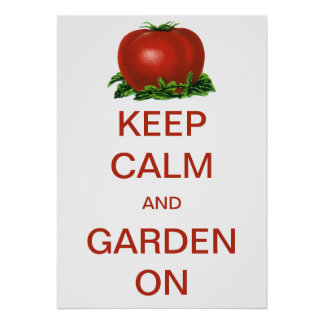 Vintage Keep Calm and Garden On Tomato Poster