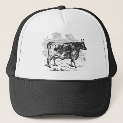 9145f3ac476 Vintage Cows Kids Spelling Alphabet C is for Cow Trucker Hat ...