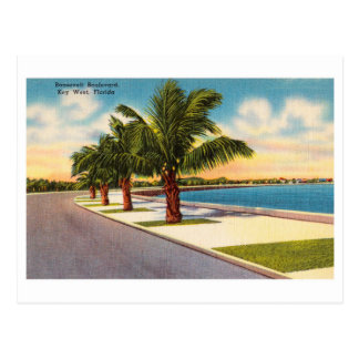 Vintage Key West Florida Roosevelt Blvd Postcard