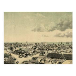 Vintage Key West Illustration Postcards