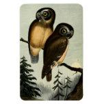 Vintage Kirtlands Owl Magnets