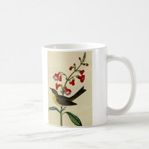 Vintage Kirtlands Warbler Bird Classic White Coffee Mug