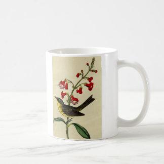 Vintage Kirtlands Warbler Bird Coffee Mug
