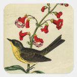 Vintage Kirtlands Warbler Bird Stickers
