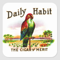 Vintage Kitsch Cigar Box Parrot Daily Habit Label