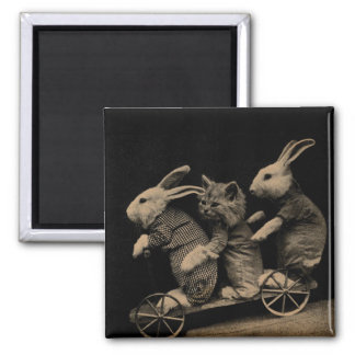 Vintage Kitten and Bunny Funny photo 2 Inch Square Magnet