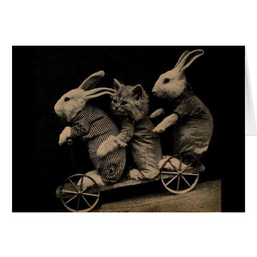 Vintage Kitten and Bunny Funny photo Greeting Card