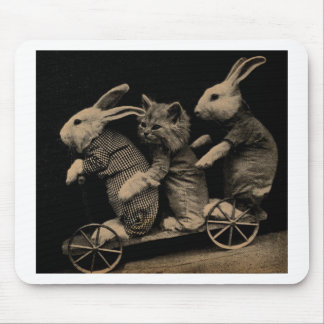 Vintage Kitten and Bunny Funny photo Mouse Pad