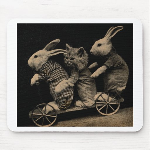 Vintage Kitten and Bunny Funny photo Mousepads