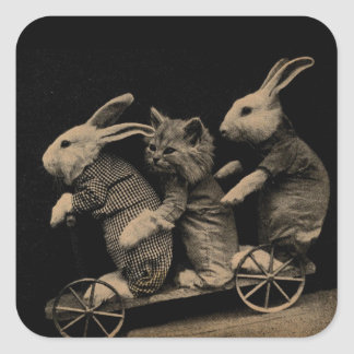 Vintage Kitten and Bunny Funny photo Square Sticker