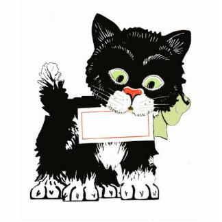 Vintage Kitten Photo Sculpture, Card, Messages