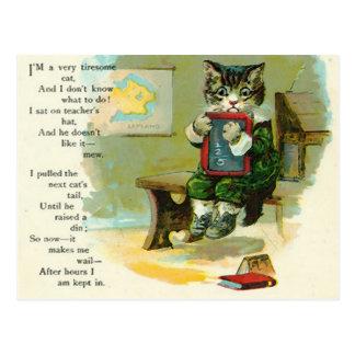 Vintage Kitten Punished at School Postcard