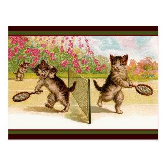 Vintage kittens Playing Cat Tennis Postcard