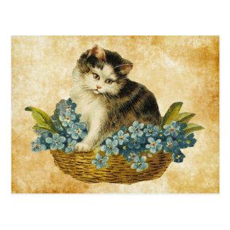 vintage kitty in basket postcard