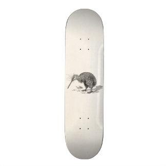 Vintage Kiwi Bird Antique Birds Template Skateboard Deck