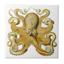 Vintage Kraken, Giant Octopus by Ernst Haeckel Ceramic Tile
