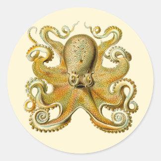 Vintage Kraken, pulpo Gamochonia, Ernst Haeckel Pegatina Redonda