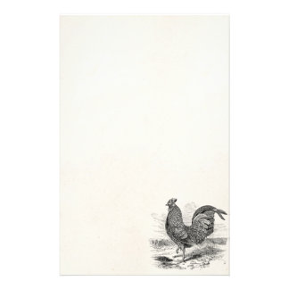 Vintage Kulm Fowl Rooster Chicken - Chickens Hen Stationery