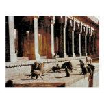 Vintage la India, templo del mono Postales