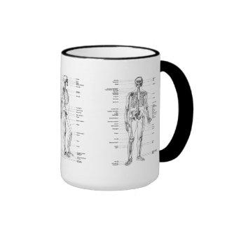 Vintage - Labeled Skeleton - Front, Back & Lateral Ringer Coffee Mug