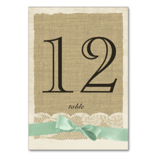 Vintage Lace and Mint Bow Table Number Card Table Card