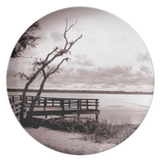 Vintage Lake View Dinner Plate