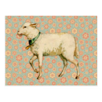 Vintage Lamb Art Postcard