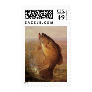 Vintage Largemouth Brown Bass Fish, Sports Fishing Postage