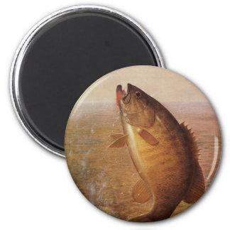 Vintage Largemouth Brown Bass, Sports Lake Fishing 2 Inch Round Magnet