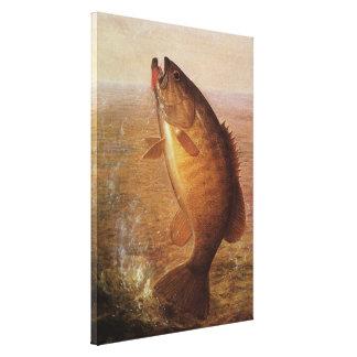 Vintage Largemouth Brown Bass, Sports Lake Fishing Canvas Print