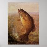 Vintage Largemouth Brown Bass, Sports Lake Fishing Poster