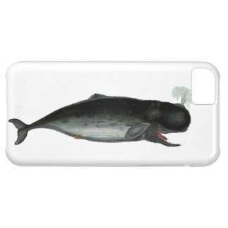 Vintage Laughing Whale iPhone 5C Case