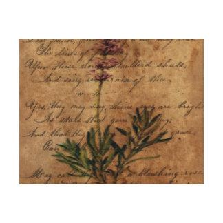 Vintage Lavender Canvas Print