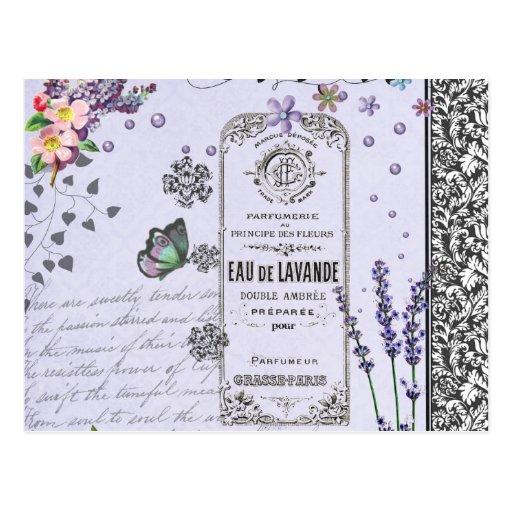 Vintage Lavender Collage Postcard