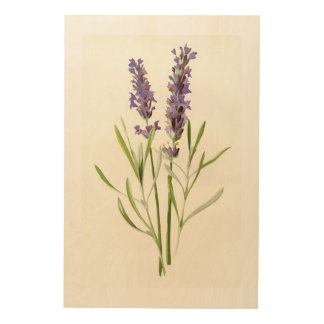 Vintage lavender wood prints