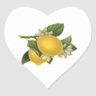 Vintage Lemons Illustration Heart Sticker