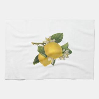Vintage Lemons Illustration Kitchen Towels