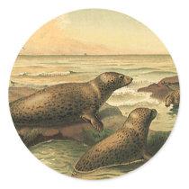 Vintage Leopard Seals by the Ocean, Wild Animals
