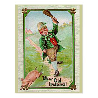 vintage leprechaun postcard
