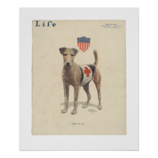 Vintage Life Magazine Cover Poster May, 1917