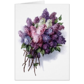 Vintage Lilacs Birthday Card