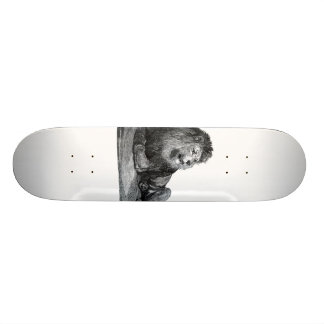 Vintage lion drawing, laying down looking right skateboard deck